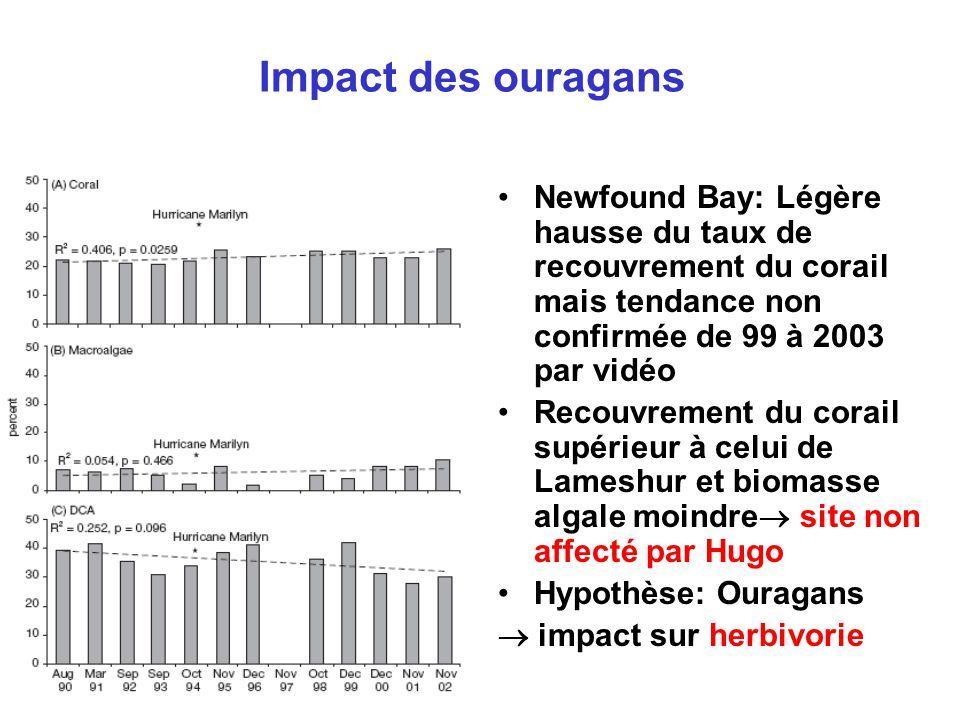 Impact des ouragans •Newfound Bay: Légère hausse du taux de recouvrement du corail mais tendance non confirmée de 99 à 2003 par vidéo •Recouvrement du corail supérieur à celui de Lameshur et biomasse algale moindre  site non affecté par Hugo •Hypothèse: Ouragans  impact sur herbivorie