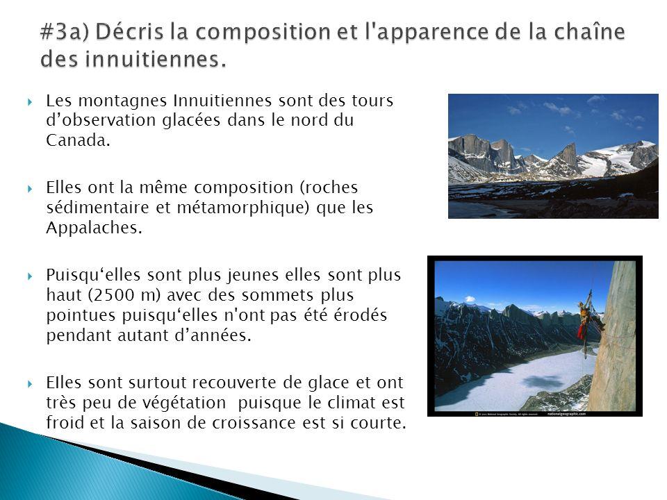  Les montagnes Innuitiennes sont des tours d'observation glacées dans le nord du Canada.  Elles ont la même composition (roches sédimentaire et méta