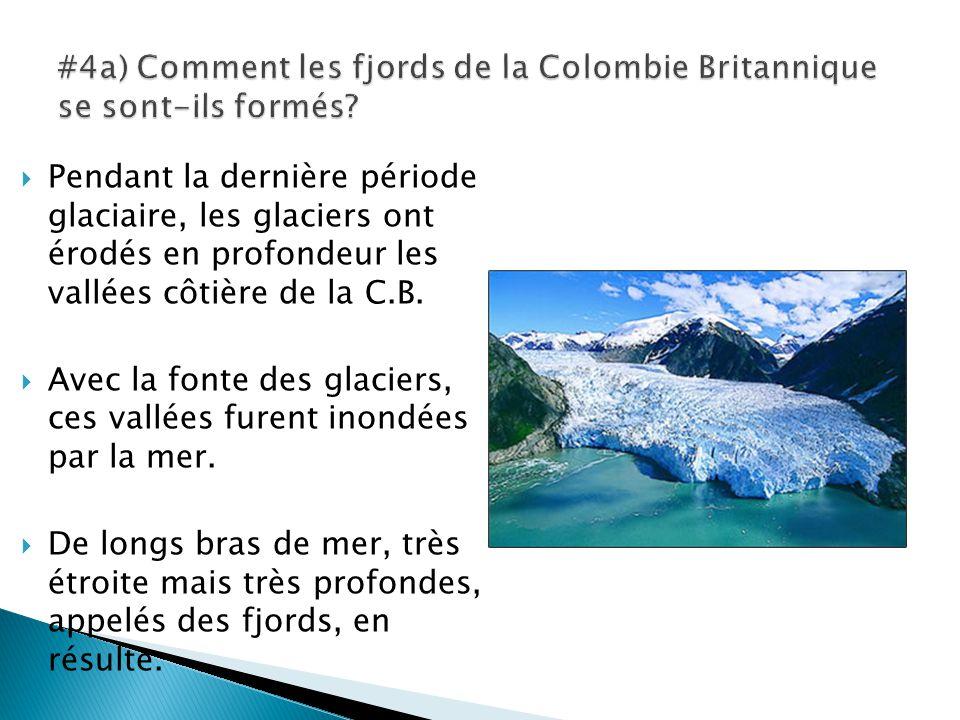  Pendant la dernière période glaciaire, les glaciers ont érodés en profondeur les vallées côtière de la C.B.  Avec la fonte des glaciers, ces vallée