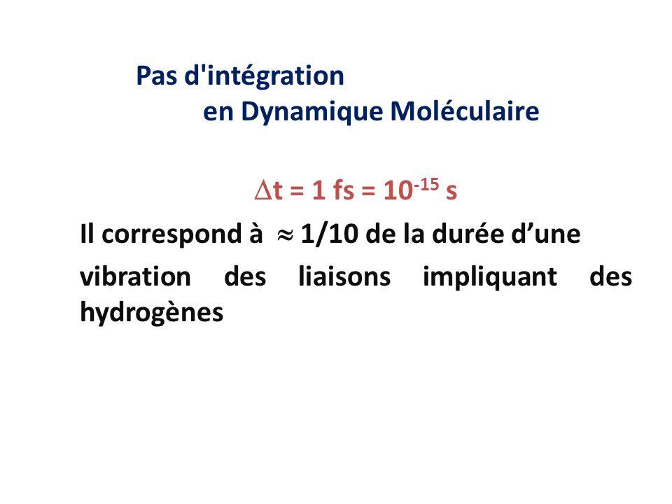 Pas d'intégration en Dynamique Moléculaire  t = 1 fs = 10 -15 s Il correspond à  1/10 de la durée d'une vibration des liaisons impliquant des hydrog