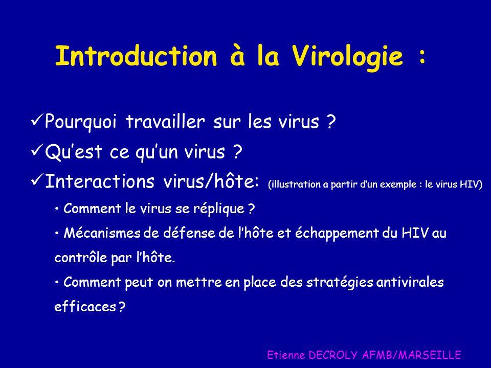 Plusieurs années Pathogénèse du HIV Phase asymptomatique SIDA VIRUSDéfenses de l'hôte VIRUS Défenses de l'hôte • Efficacité réplicative du virus • Echappement au SI • Cellules cibles : CD4 • contrôle de la variabilité • hyper glycosylation • AC facilitants • Latence • Disfonctionnement du SI • Contrôle de l'immunité innée • Effet cytopathogène • cyncitas • Nef • Contrôle par le SI •Anticorps •Cellules T cytotoxiques • Défense cellulaire (immunité innée et intrinsèque) • Apobec 3G • contrôle de l'uracilation de L'ADN VIRUS Défenses de l'hôte