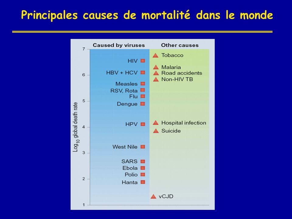 Etat actuel de l'épidémie en FRANCE (5) Situation en 2004 - (source : rapport delfraisy) • Personnes vivant avec le HIV/SIDA : entre 60 000 et 176 000 • Nouveaux cas d infection à HIV en 2001 : 5 000 • Cas de SIDA déclarés depuis le début de l'épidémie : 54 781 • Décès dus au SIDA en 2001: 409 • Décès dus au SIDA depuis le début de l'épidémie : 32 119 • 60% des cas traiter = succes virologique