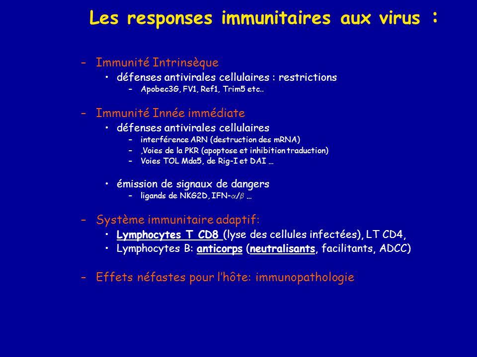 Les responses immunitaires aux virus : –Immunité Intrinsèque •défenses antivirales cellulaires : restrictions –Apobec3G, FV1, Ref1, Trim5 etc.. –Immun