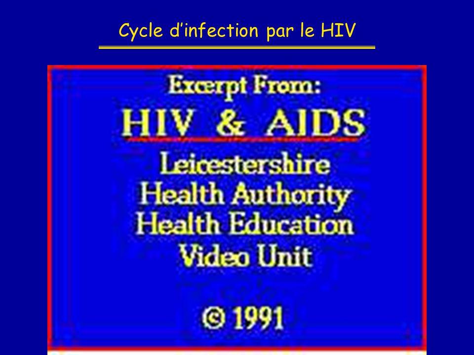 Cycle d'infection par le HIV