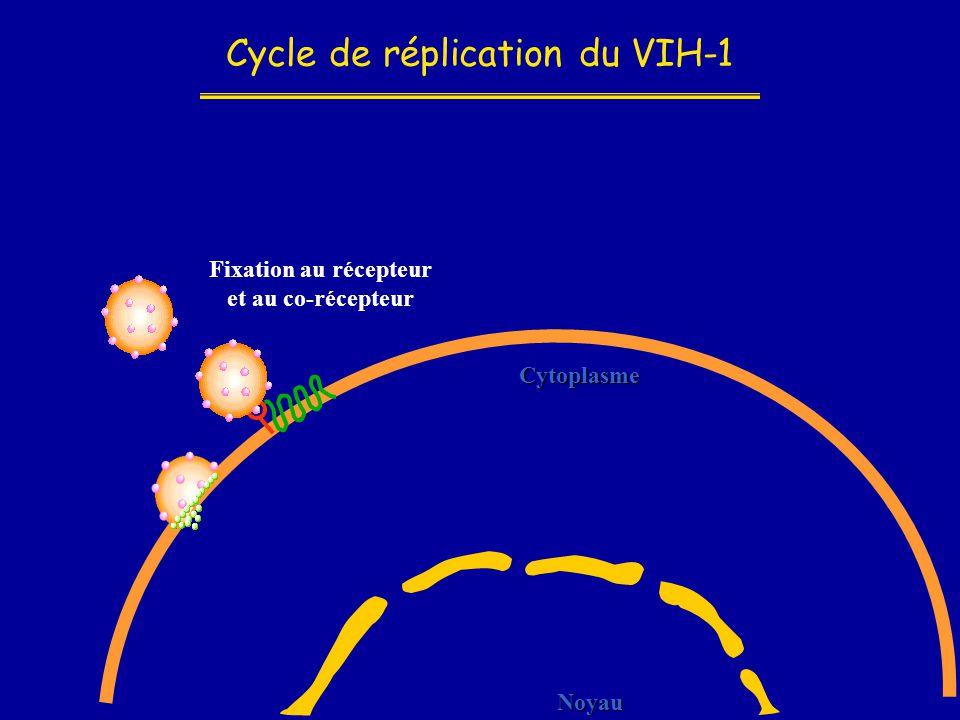 Cycle de réplication du VIH-1 Noyau Cytoplasme Fixation au récepteur et au co-récepteur