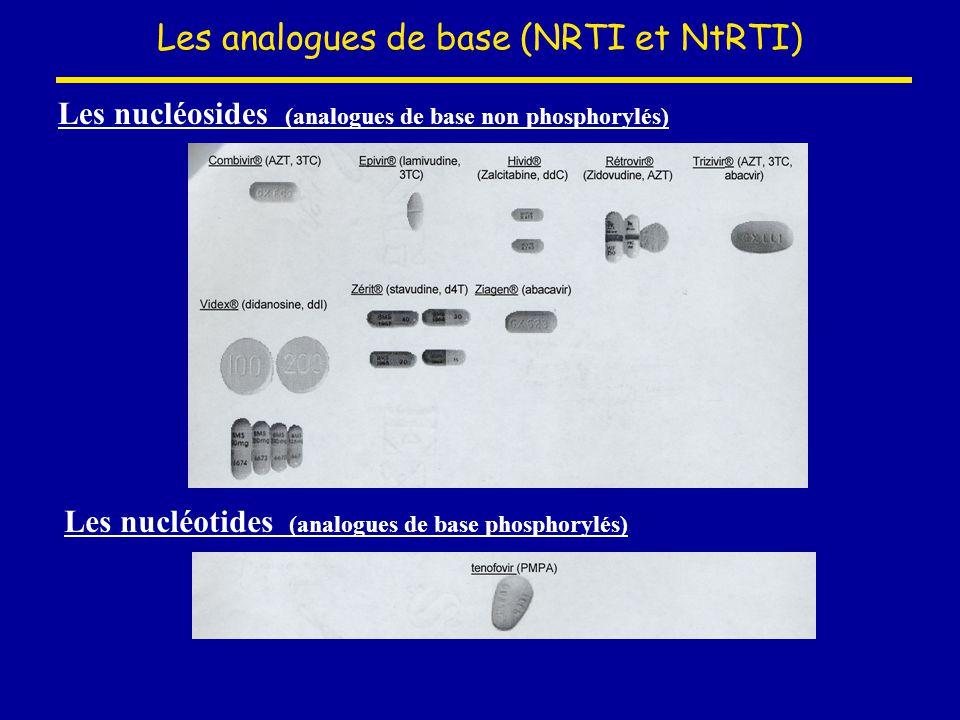 Les analogues de base (NRTI et NtRTI) Les nucléosides (analogues de base non phosphorylés) Les nucléotides (analogues de base phosphorylés)