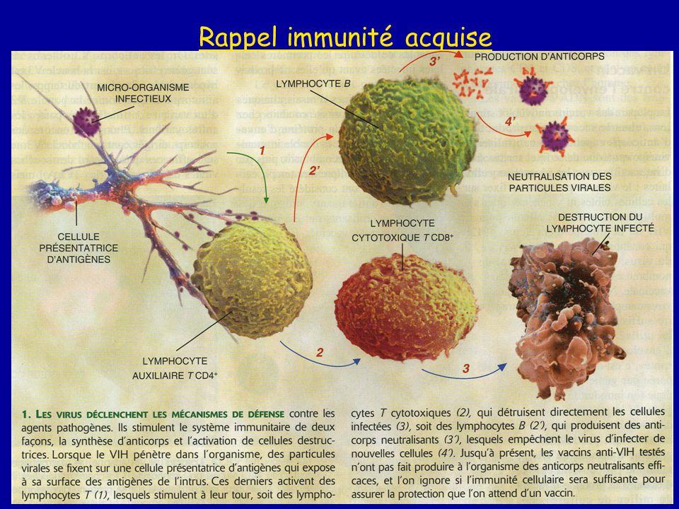 Rappel immunité acquise