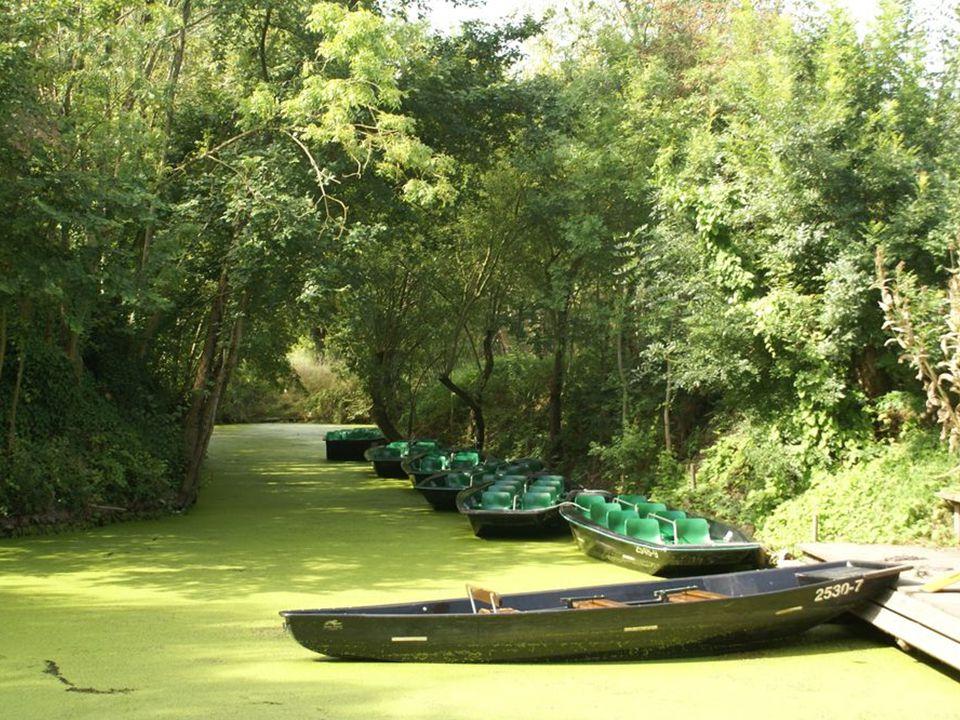 Les Sables-d Olonne (85) La Venise Verte