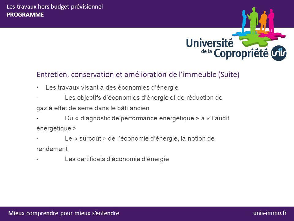 Mieux comprendre pour mieux s'entendre unis-immo.fr Les travaux hors budget prévisionnel PROGRAMME Entretien, conservation et amélioration de l'immeuble (Suite) •Les travaux visant à des économies d'énergie -Les objectifs d'économies d'énergie et de réduction de gaz à effet de serre dans le bâti ancien -Du « diagnostic de performance énergétique » à « l'audit énergétique » -Le « surcoût » de l'économie d'énergie, la notion de rendement -Les certificats d'économie d'énergie