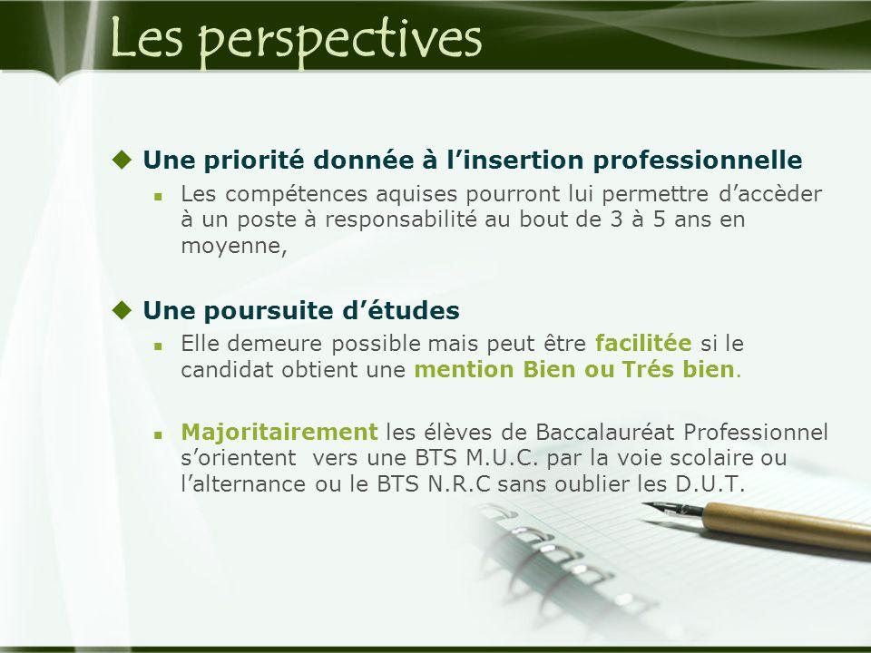 Les perspectives  Une priorité donnée à l'insertion professionnelle  Les compétences aquises pourront lui permettre d'accèder à un poste à responsab