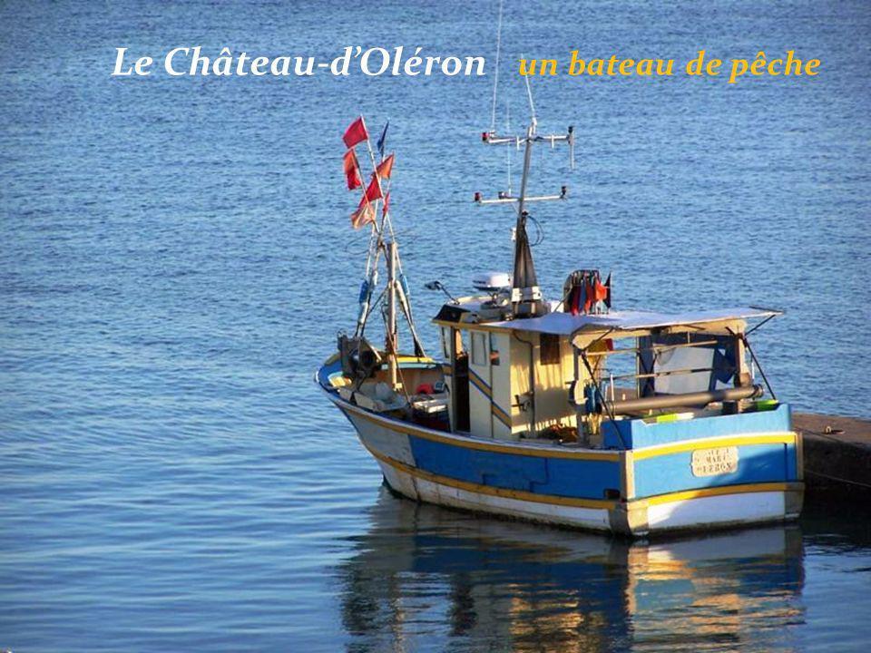 Le Château-d'Oléron cabanes. multicolores d'ostréiculteurs