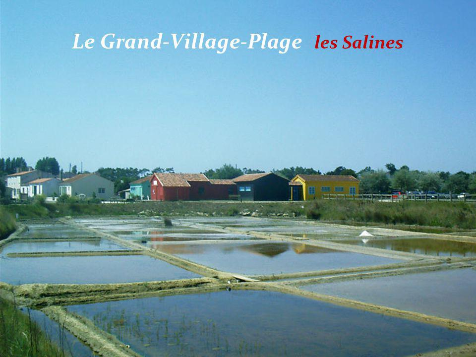 Le Grand-Village-Plage, Port des Salines les cabanes
