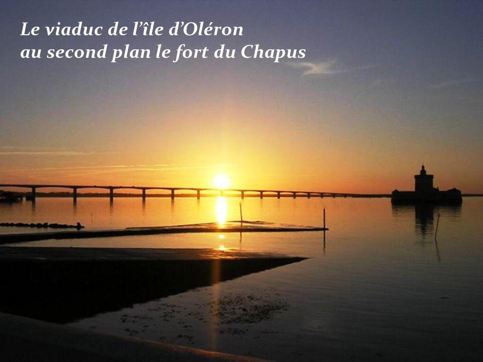 Le viaduc de l'île d'Oléron au second plan le fort du Chapus