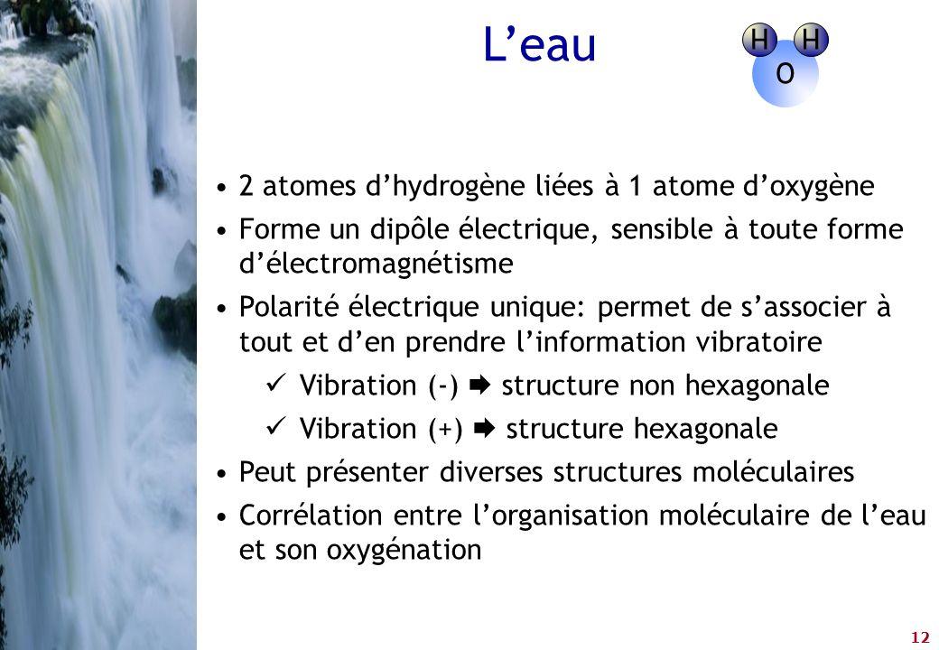 12 •2 atomes d'hydrogène liées à 1 atome d'oxygène •Forme un dipôle électrique, sensible à toute forme d'électromagnétisme •Polarité électrique unique