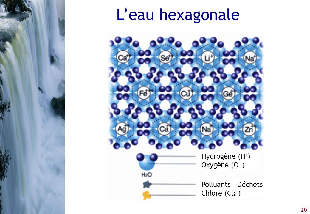 20 Hydrogène (H + ) Oxygène (O -- ) Polluants - Déchets Chlore (Cl 2 - ) L'eau hexagonale