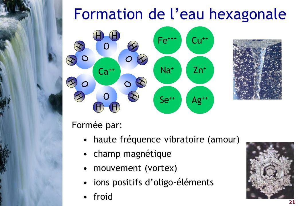 21 Formation de l'eau hexagonale Formée par: •haute fréquence vibratoire (amour) •champ magnétique •mouvement (vortex) •ions positifs d'oligo-éléments