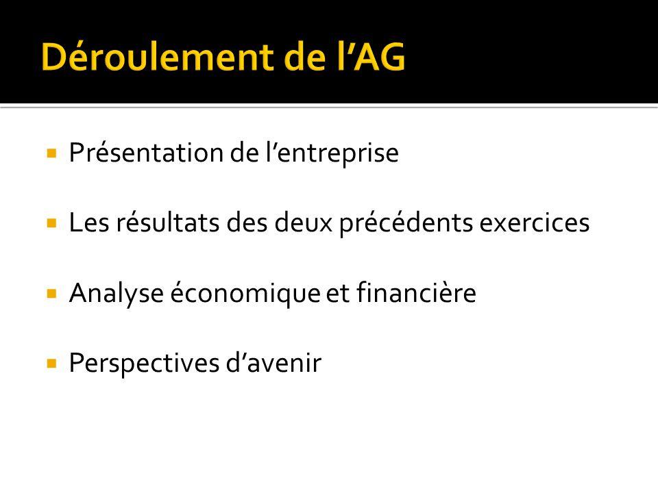  Présentation de l'entreprise  Les résultats des deux précédents exercices  Analyse économique et financière  Perspectives d'avenir