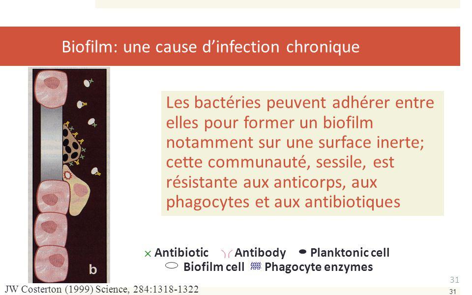 31 JW Costerton (1999) Science, 284:1318-1322 Les bactéries peuvent adhérer entre elles pour former un biofilm notamment sur une surface inerte; cette