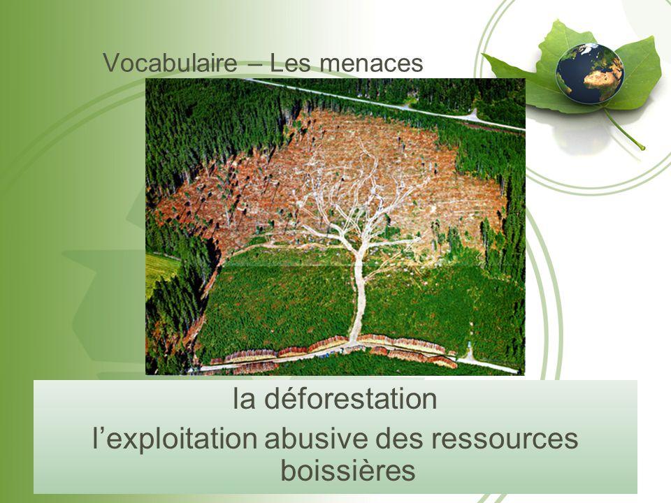 Vocabulaire – Les menaces la déforestation l'exploitation abusive des ressources boissières