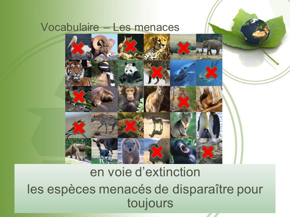 Vocabulaire – Les menaces en voie d'extinction les espèces menacés de disparaître pour toujours