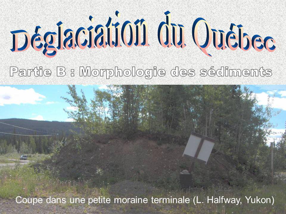Coupe dans une petite moraine terminale (L. Halfway, Yukon)