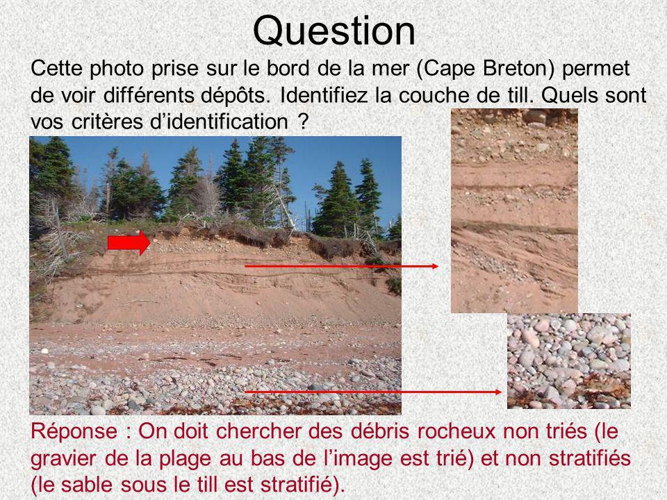 Question Cette photo prise sur le bord de la mer (Cape Breton) permet de voir différents dépôts. Identifiez la couche de till. Quels sont vos critères