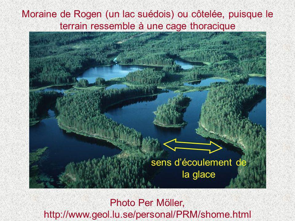 Moraine de Rogen (un lac suédois) ou côtelée, puisque le terrain ressemble à une cage thoracique Photo Per Möller, http://www.geol.lu.se/personal/PRM/