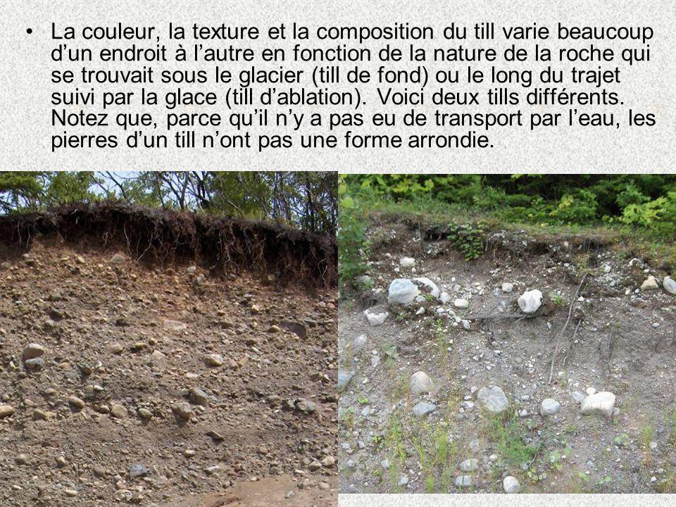 •La couleur, la texture et la composition du till varie beaucoup d'un endroit à l'autre en fonction de la nature de la roche qui se trouvait sous le g