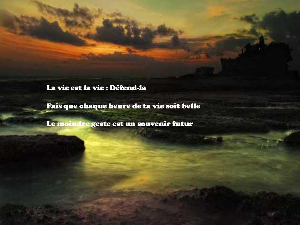 La vie est la vie : Défend-la Fais que chaque heure de ta vie soit belle Le moindre geste est un souvenir futur