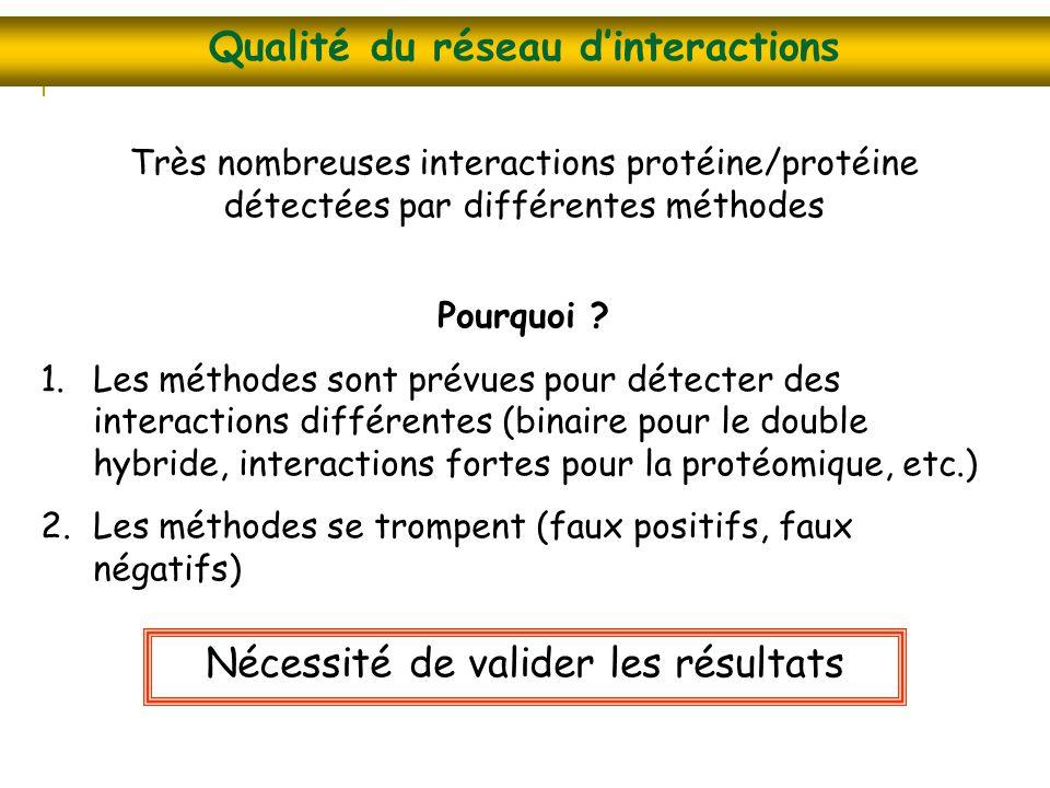Qualité du réseau d'interactions Nécessité de valider les résultats Très nombreuses interactions protéine/protéine détectées par différentes méthodes