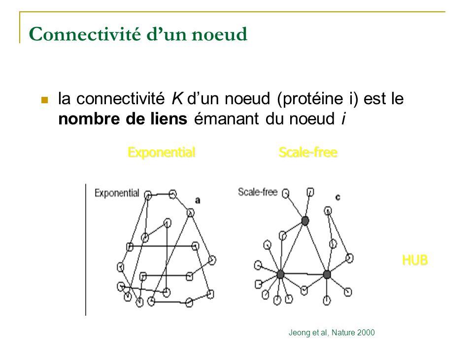 Connectivité d'un noeud Jeong et al, Nature 2000 ExponentialScale-free  la connectivité K d'un noeud (protéine i) est le nombre de liens émanant du n