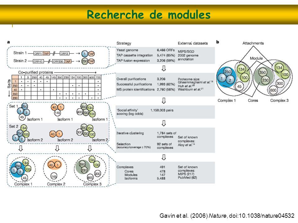 Recherche de modules Gavin et al. (2006) Nature, doi:10.1038/nature04532