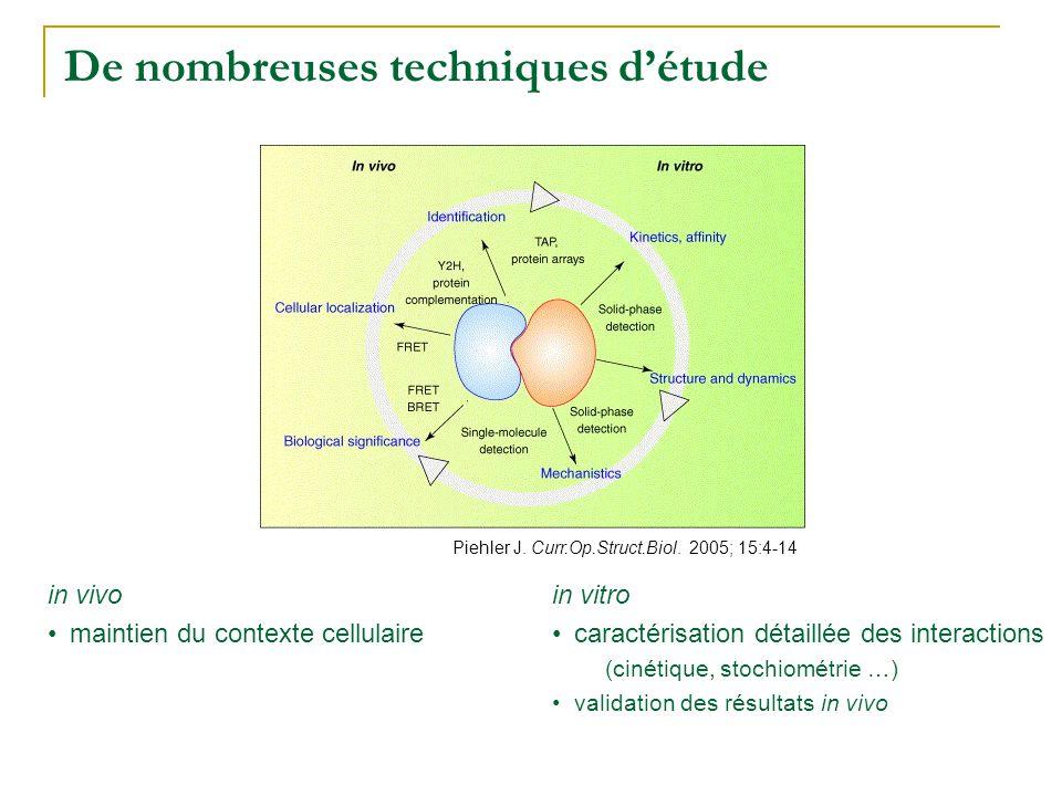 De nombreuses techniques d'étude Piehler J. Curr.Op.Struct.Biol. 2005; 15:4-14 in vivo •maintien du contexte cellulaire in vitro •caractérisation déta