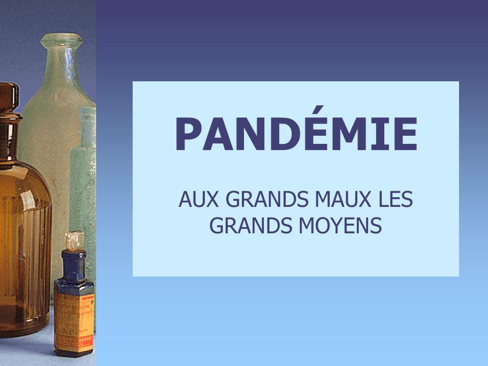 PANDÉMIE AUX GRANDS MAUX LES GRANDS MOYENS