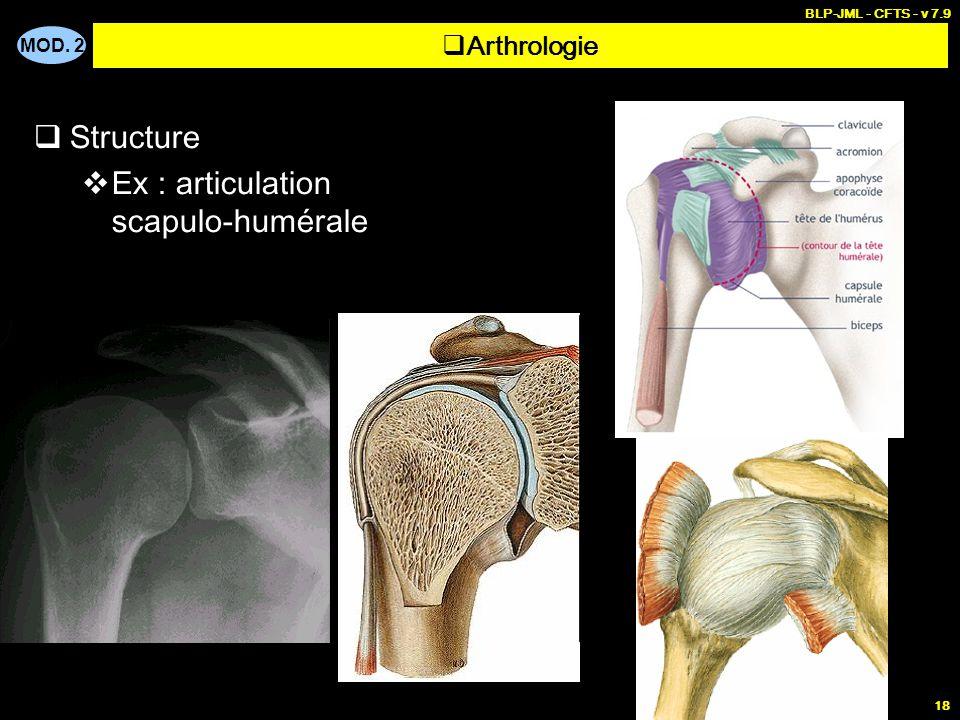 MOD. 2 BLP-JML - CFTS - v 7.9 18  Structure  Ex : articulation scapulo-humérale  Arthrologie