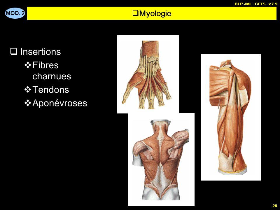 MOD. 2 BLP-JML - CFTS - v 7.9 26  Insertions  Fibres charnues  Tendons  Aponévroses  Myologie