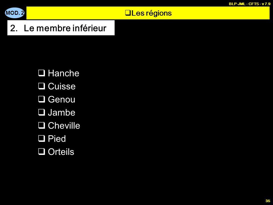 MOD. 2 BLP-JML - CFTS - v 7.9 35  Hanche  Cuisse  Genou  Jambe  Cheville  Pied  Orteils  Les régions 2.Le membre inférieur