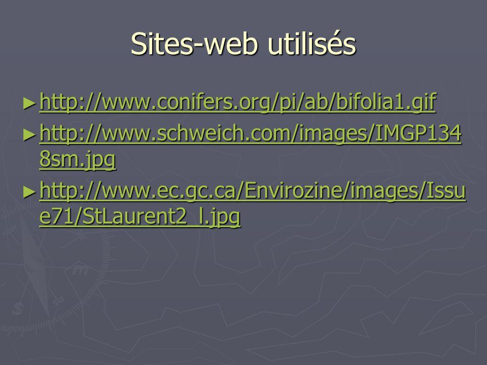 Sites-web utilisés ► http://www.conifers.org/pi/ab/bifolia1.gif http://www.conifers.org/pi/ab/bifolia1.gif ► http://www.schweich.com/images/IMGP134 8s