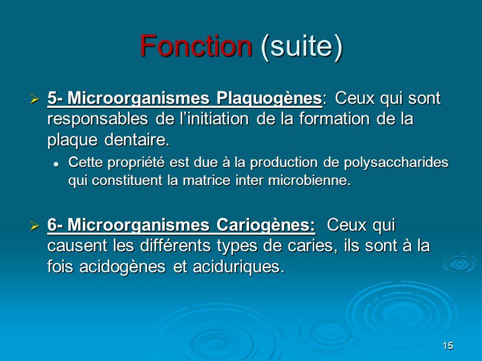 15 Fonction (suite) 5555- Microorganismes Plaquogènes: Ceux qui sont responsables de l'initiation de la formation de la plaque dentaire. CCCCe