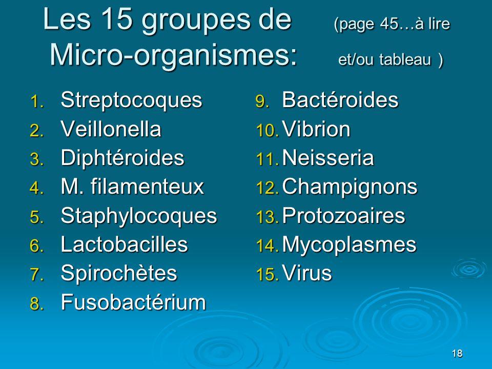 18 Les 15 groupes de (page 45…à lire Micro-organismes: et/ou tableau ) 1. Streptocoques 2. Veillonella 3. Diphtéroides 4. M. filamenteux 5. Staphyloco