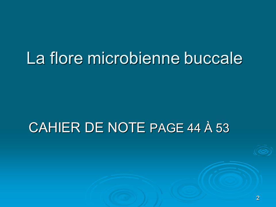 3 Classification des micros organismes
