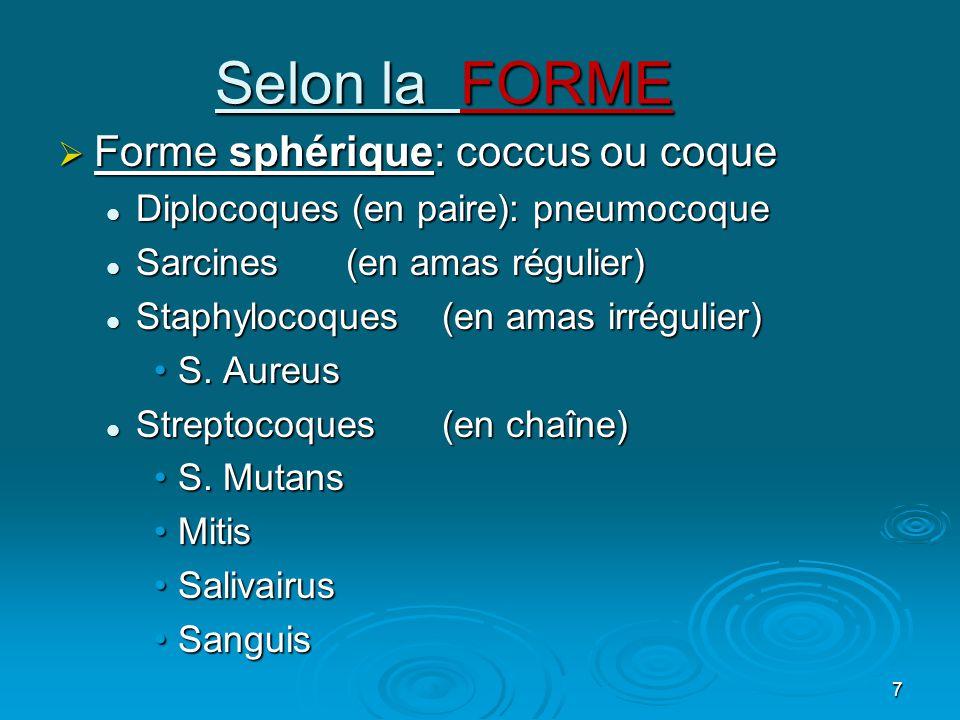 7 Selon la FORME  Forme sphérique: coccus ou coque  Diplocoques (en paire): pneumocoque  Sarcines (en amas régulier)  Staphylocoques (en amas irrégulier) •S.