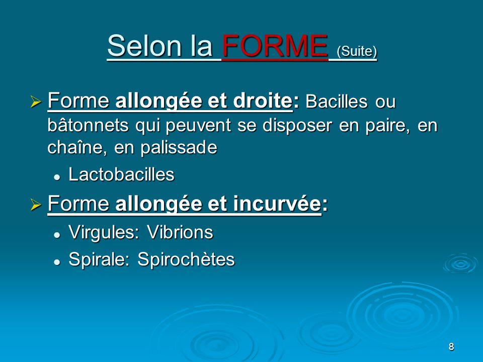 8 Selon la FORME (Suite)  Forme allongée et droite: Bacilles ou bâtonnets qui peuvent se disposer en paire, en chaîne, en palissade  Lactobacilles  Forme allongée et incurvée:  Virgules: Vibrions  Spirale: Spirochètes
