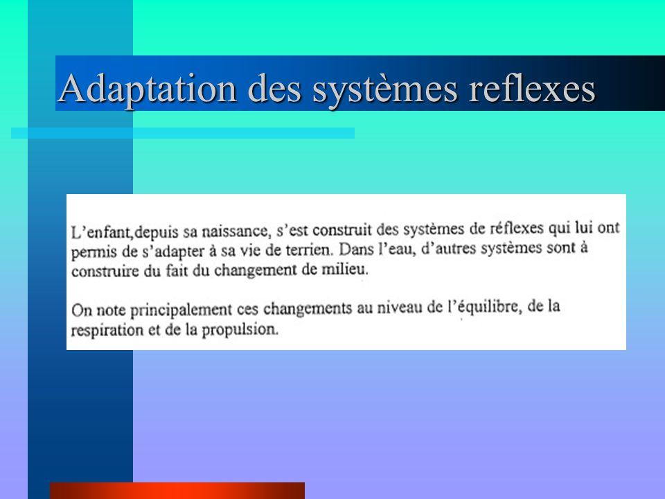 Adaptation des systèmes reflexes