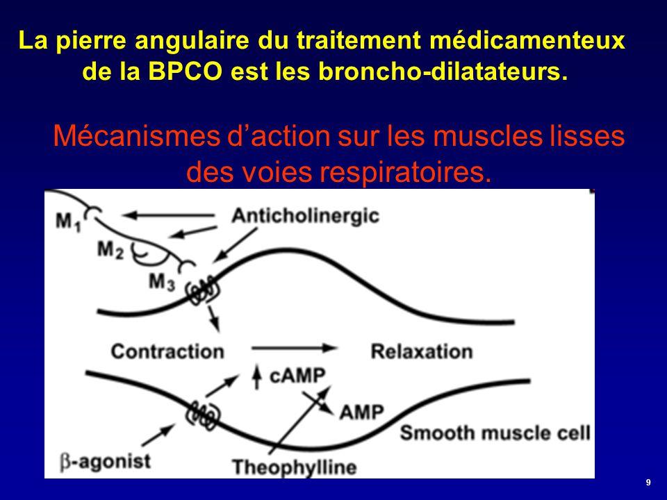 Mécanismes d'action sur les muscles lisses des voies respiratoires. La pierre angulaire du traitement médicamenteux de la BPCO est les broncho-dilatat
