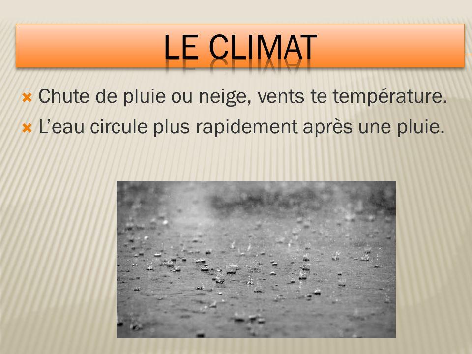  Chute de pluie ou neige, vents te température.  L'eau circule plus rapidement après une pluie.