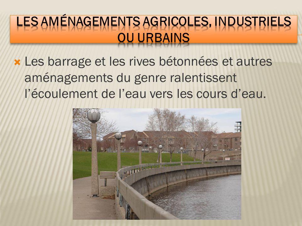  Les barrage et les rives bétonnées et autres aménagements du genre ralentissent l'écoulement de l'eau vers les cours d'eau.