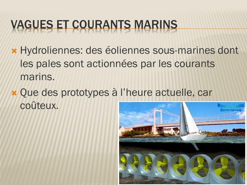  Hydroliennes: des éoliennes sous-marines dont les pales sont actionnées par les courants marins.  Que des prototypes à l'heure actuelle, car coûteu