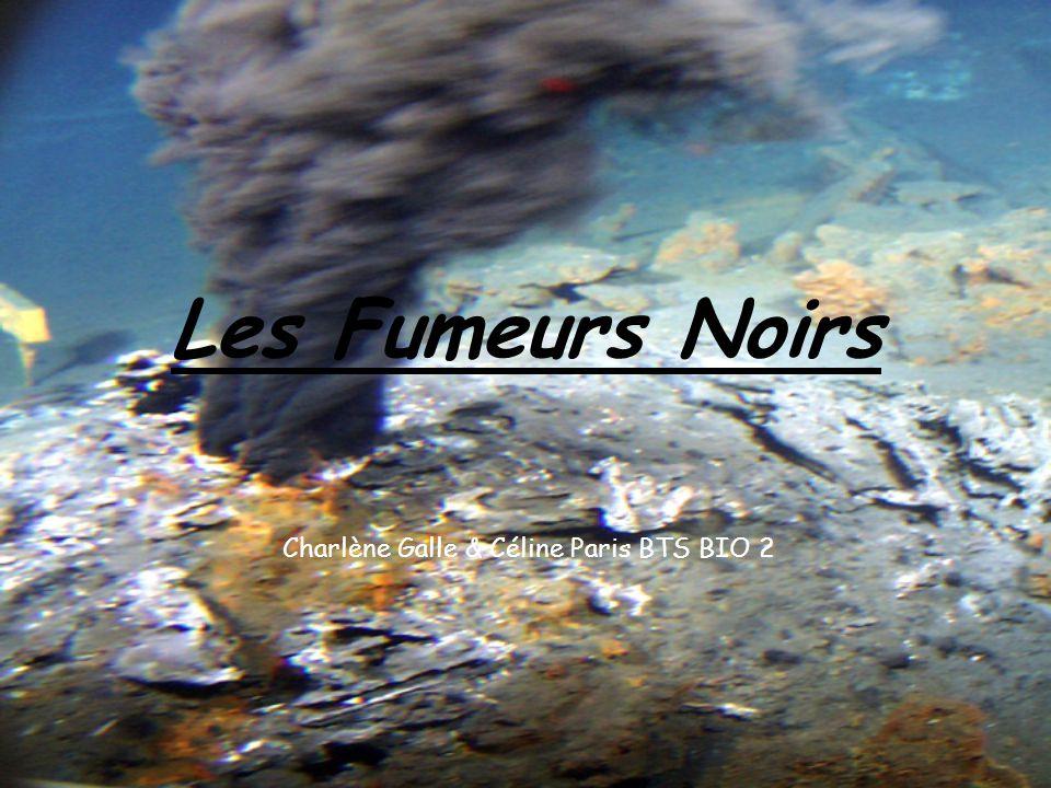 Les Fumeurs Noirs Charlène Galle & Céline Paris BTS BIO 2