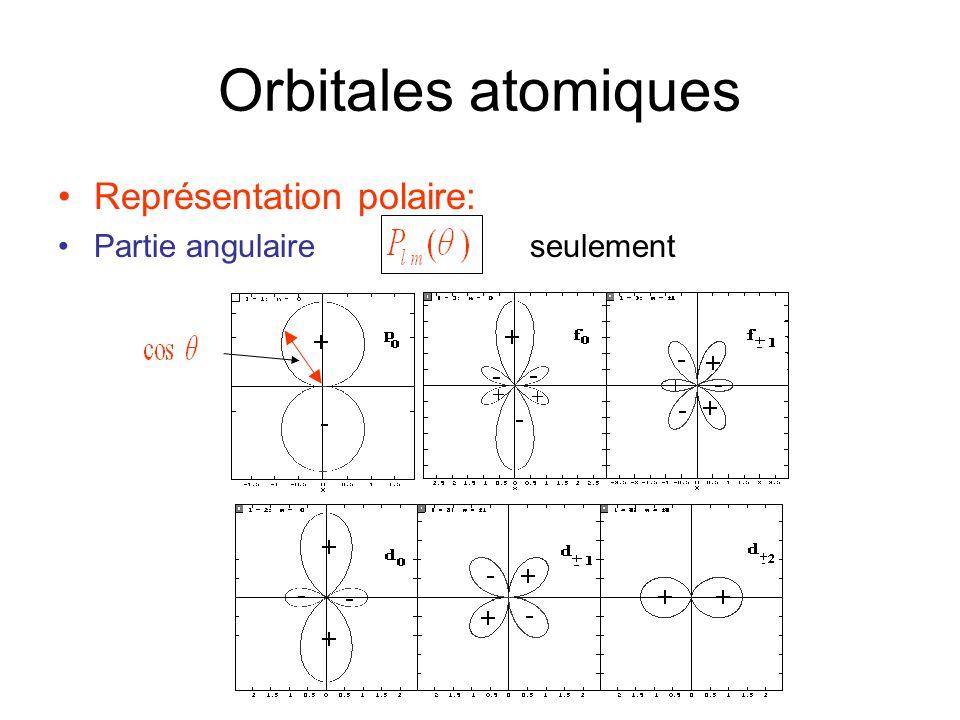 Orbitales atomiques •Représentation polaire: •Partie angulaire seulement